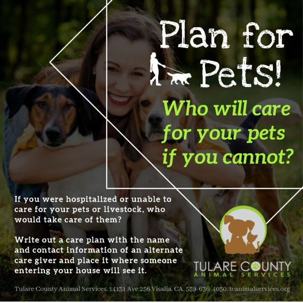 Plan for Pets